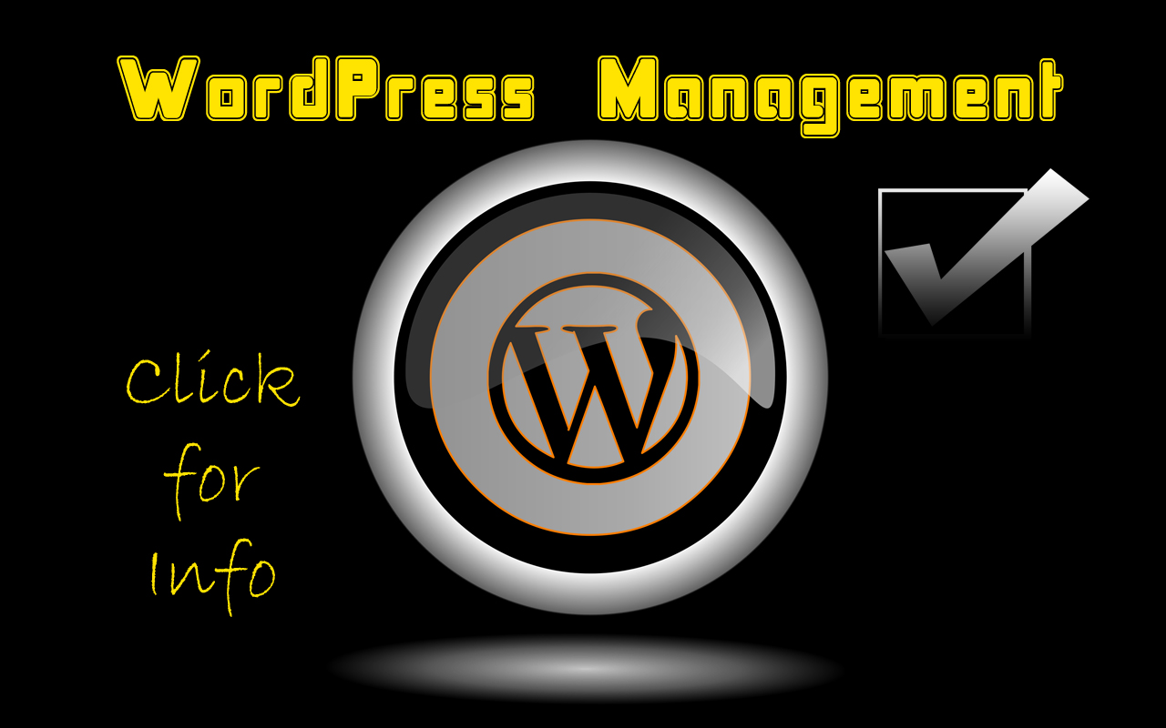 Need WordPress Help?